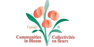 Communities in Bloom (Association)